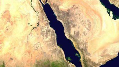 حقول البحر الأحمر